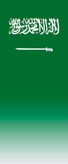 saudi_flag_overlay_petro.jpg