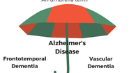 Dementia: What is it? Who gets it? Where to get support?