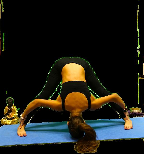 jenny accademyc yoga bolzano