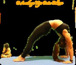 arco jenny yoga
