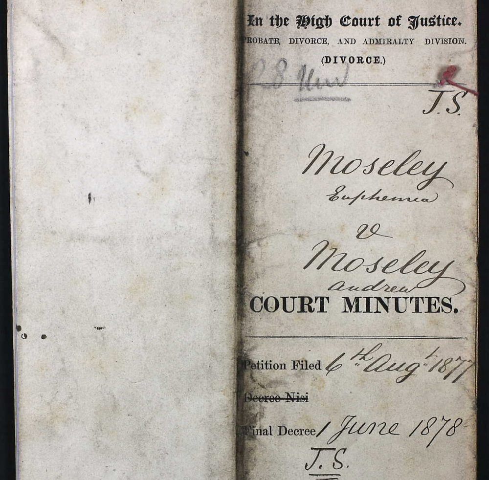 Image of original court record of Andrew Moseley and Euphemia's divorce.
