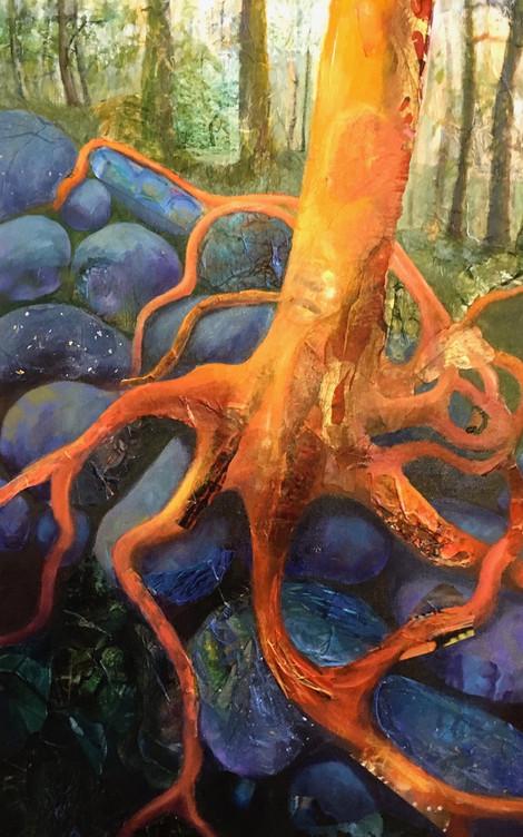 Firey Roots