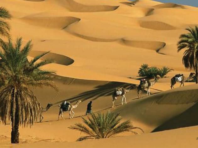 מראות עוצרי נשימה במרוקו
