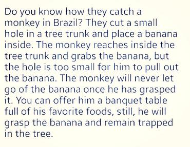 Drop The Banana