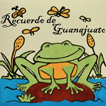 Guanajuato Frog