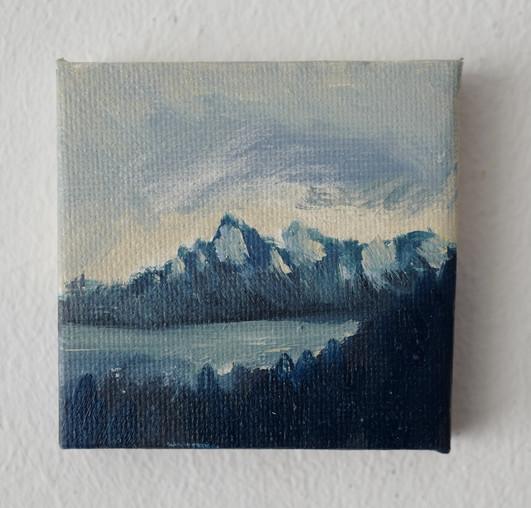 XS-Forêts et alpes.JPG
