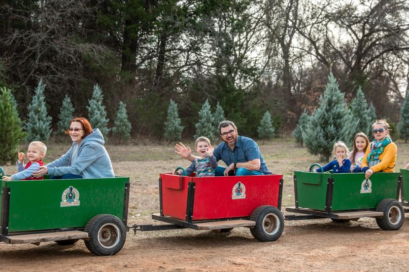 mainstay farm christmas