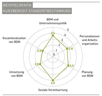 Grafik_Anteilsfinanzierung_BGM-Analysen_