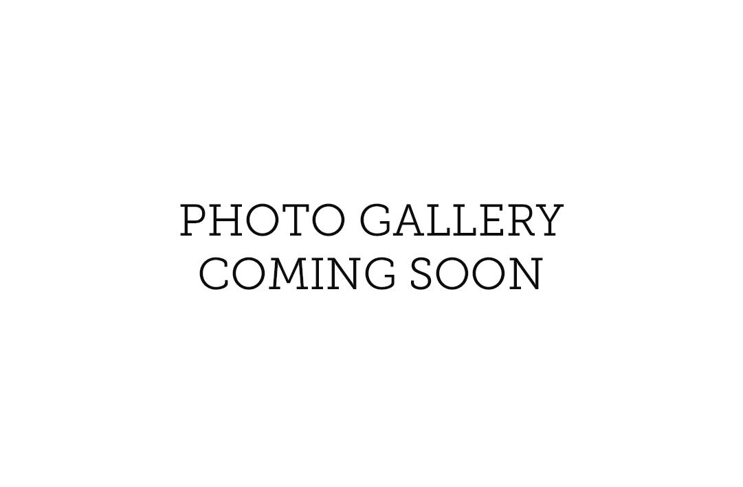 IB_Skate_Gallery_comingsoon.jpg