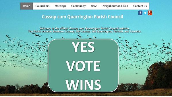 VOTE YES WINS.jpg
