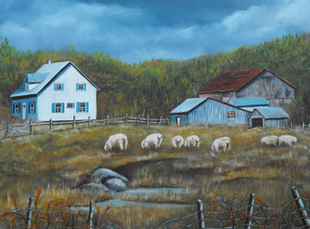 Portneuf-moutons