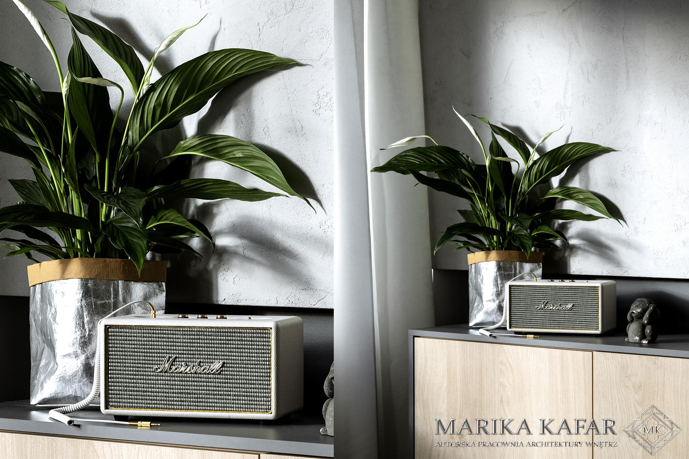Marika Kafar. Jasne wnętrze z dużą ilością roślin.