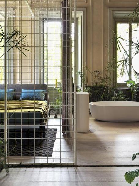 10 plantas de interior fáciles de mantener | The 10 easy-to-maintain indoor plants