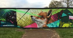 fox and laser beam