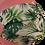 Thumbnail: mondkapje botanisch