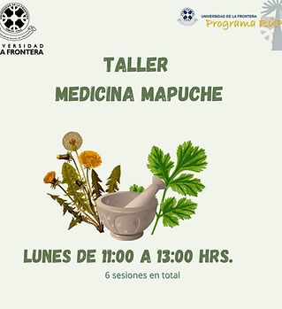 medicina mapuche.jpg