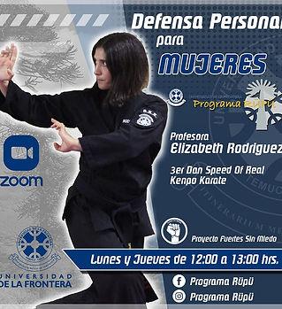 defensa.jpg