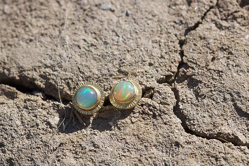 Ethiopian Opal Stud Earrings (05352)