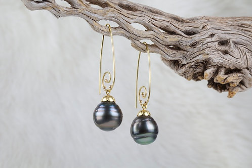 Tahitian Pearl Earrings (02117)