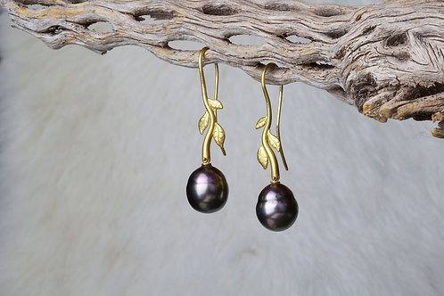 Tahitian Pearl Earrings (0882)