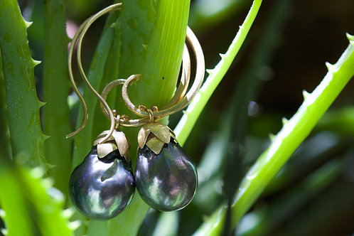 Tahitian Pearl and Gold Earrings (05346)
