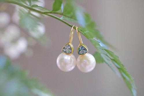 South Sea Pearl Earrings (04509)