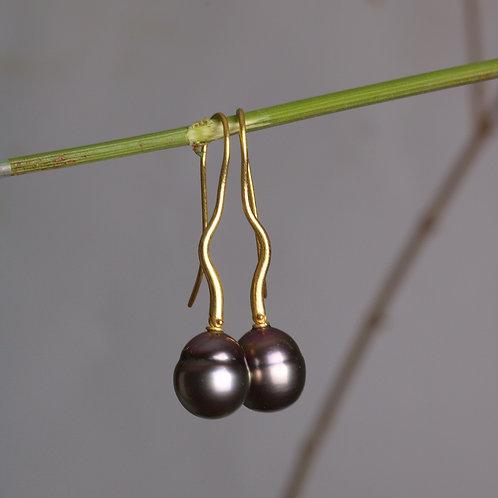 Tahitian Pearl Earrings (06014)