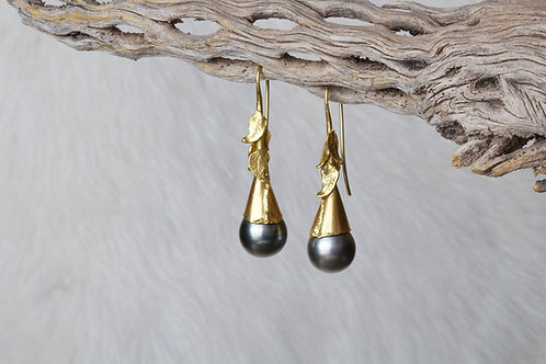 Tahitian Pearl Gold Earrings (02735)