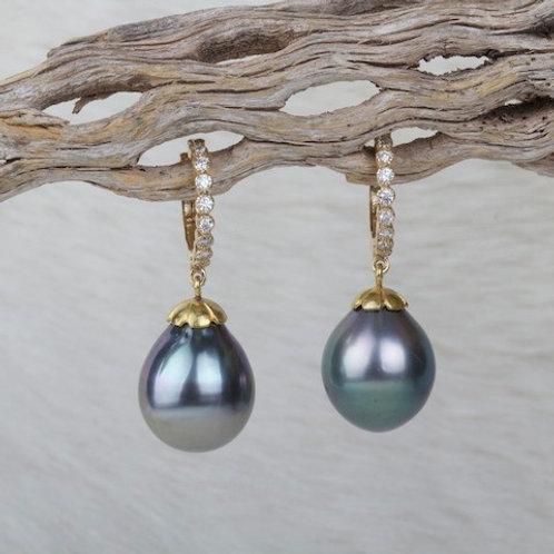 Tahitian Pearl Diamond Earrings (03323)
