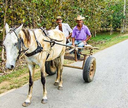 Cuban campesinos