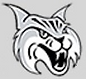 Bobcat2-1.png