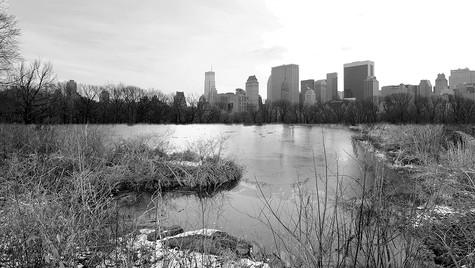 CityScape-1.jpg