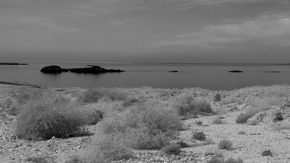 DesertSound.jpg