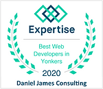 Daniel James Consulting - Best Web Devel