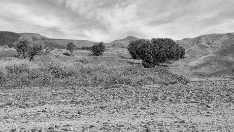 DesertSky.jpg