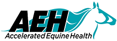 AEH Logo White Background.png