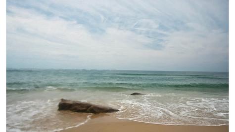 VineyardOcean-TSmall.jpg