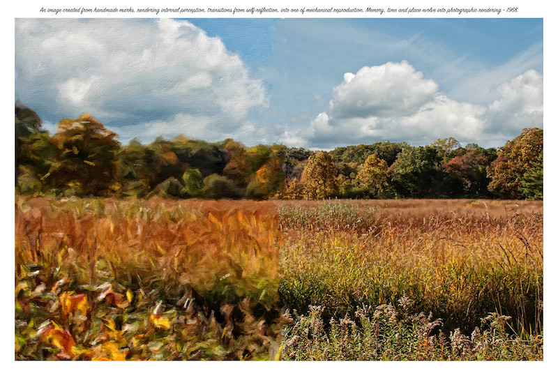 Meadow-Small.jpg