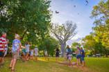 Timber Creek Hotel Kite feeding