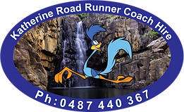 Kath Roadrunner with waterfall.png