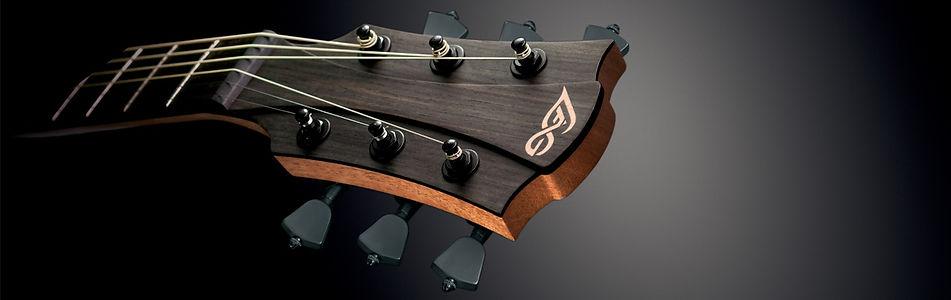 banniere-guitares-folk.jpg