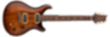 paulsguitar_straight1_1.png