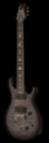 se_mark_holcomb_svn_2020_holcomb_burst.j