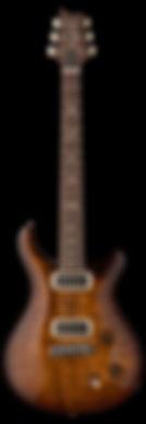 pauls_guitar_2019_vertical.jpg