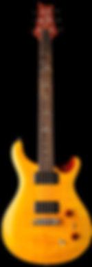 se_pauls_guitar_2019_vertical.jpg
