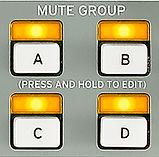 MuteGroup.jpg