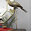 Thumbnail: SOLD OUT!!Brass Parrot on Stand
