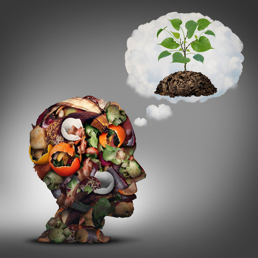 Composting: Why it Matters