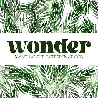 Wonder Series Square.jpg