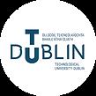 Viaja y estudia en TUDUBLIN con EPI